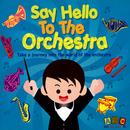 Say Hello To The Orchestra/Sean O'Boyle