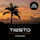 Summer Nights (The Him Remix) (feat. John Legend)/DJ TIESTO
