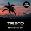 Summer Nights (Tiësto's Deep House Remix) (feat. John Legend)/DJ TIESTO