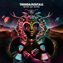 Never Say Never/Thundamentals