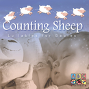 Counting Sheep - Lullabies For Babies/Sean O'Boyle