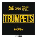 Trumpets (feat. Sean Paul)/Sak Noel, Salvi