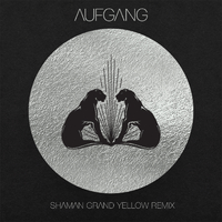 Shaman(Grand Yellow Remix)