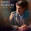 Endless Days/David Hobson