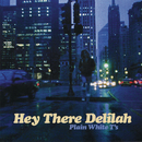Hey There Delilah/Plain White T's