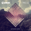 Sweet Lies (GotSome Boom Remix) (feat. Karen Harding)/Wilkinson