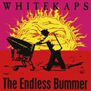 The Endless Bummer/White Kaps