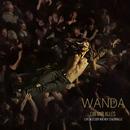Gib mir alles (Live)/Wanda