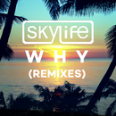 Why (Remixes) (feat. Summer Rayne)/Skylife