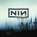 With Teeth (UK Only Version)/Nine Inch Nails