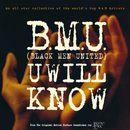 U Will Know/BMU (Black Men United)