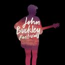Festival/John Buckley