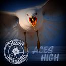Aces High/Steve 'n' Seagulls
