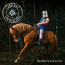 Brothers In Farms/Steve 'n' Seagulls