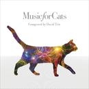 ねこのための音楽 - Music For Cats/David Teie