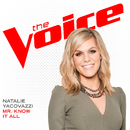 Mr. Know It All (The Voice Performance)/Natalie Yacovazzi