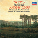 Brahms: Clarinet Trio; Horn Trio/András Schiff, Peter Schmidl, Günter Högner