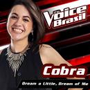 Dream A Little Dream Of Me (The Voice Brasil 2016)/Cobra