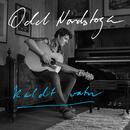 Kaldt vatn (Acoustic)/Odd Nordstoga