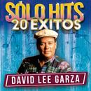 Sólo Hits/David Lee Garza
