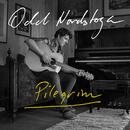 Pilegrim (Acoustic)/Odd Nordstoga