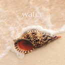 Water/Glenn Heaton, Geoff McGarvey