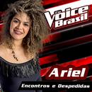 Encontros E Despedidas (The Voice Brasil 2016)/Ariel