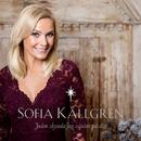Julen skynda jag väntar på dig/Sofia Källgren