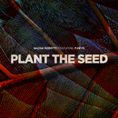 Plant The Seed (feat. p. keys)/Sacha Robotti