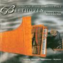 Beethoven: Complete Piano Sonatas Vol. 1/Gerard Willems