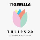 TULIPS 2.0 (feat. Okenyo, Gill Bates)/Tigerilla