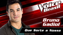 Que Sorte A Nossa (The Voice Brasil 2016 / Audio)/Bruno Gadiol