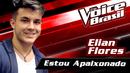 Estou Apaixonado(The Voice Brasil 2016 / Audio)/Elian Flores