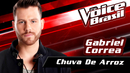 Chuva De Arroz(The Voice Brasil 2016 / Audio)/Gabriel Correa