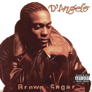 Brown Sugar/D'Angelo and The Vanguard