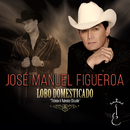 Lobo Domesticado/José Manuel Figueroa