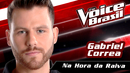 Na Hora Da Raiva(The Voice Brasil 2016 / Audio)/Gabriel Correa
