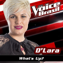 What's Up (The Voice Brasil 2016)/D'Lara