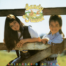 Aniversario Do Tatu/Sandy & Junior