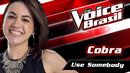 Use Somebody(The Voice Brasil 2016 / Audio)/Cobra