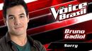 Sorry (The Voice Brasil 2016 / Audio)/Bruno Gadiol