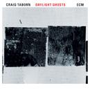 Daylight Ghosts/Craig Taborn