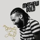 Magnetic Field/Mathew Gold