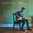 Mercy (Acoustic Guitar)/Shawn Mendes