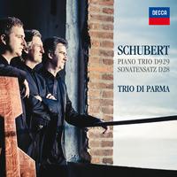 Schubert: Piano Trio D929 - Sonatensatz D28