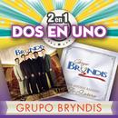 2En1/Grupo Bryndis