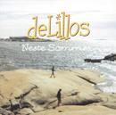 Neste sommer (Jubileumsutgave) (Remastered)/deLillos