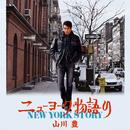 ニューヨーク物語/山川 豊