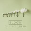 Bloom (Radio Version)/Grayson Reed
