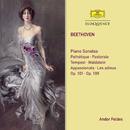 Beethoven: Piano Sonatas/Andor Földes